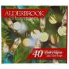 Alderbrook 40 Clear Shadeless Fairy Lights Set