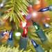 Genuine Alderbrook 40 Multi-Coloured Shadeless Fairy Light Set - UK Plug