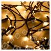 Guirlande De Noël De 100 Lumières Led Blanc Chaud Minuterie- A Piles - The Christmas Workshop