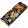 Insecto Insecto Kleidermottenfalle (2er Packung)