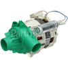 Brandt Recirculation Pump