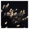 The Christmas Workshop 40 LED Warm White String Lights - Battery Powered