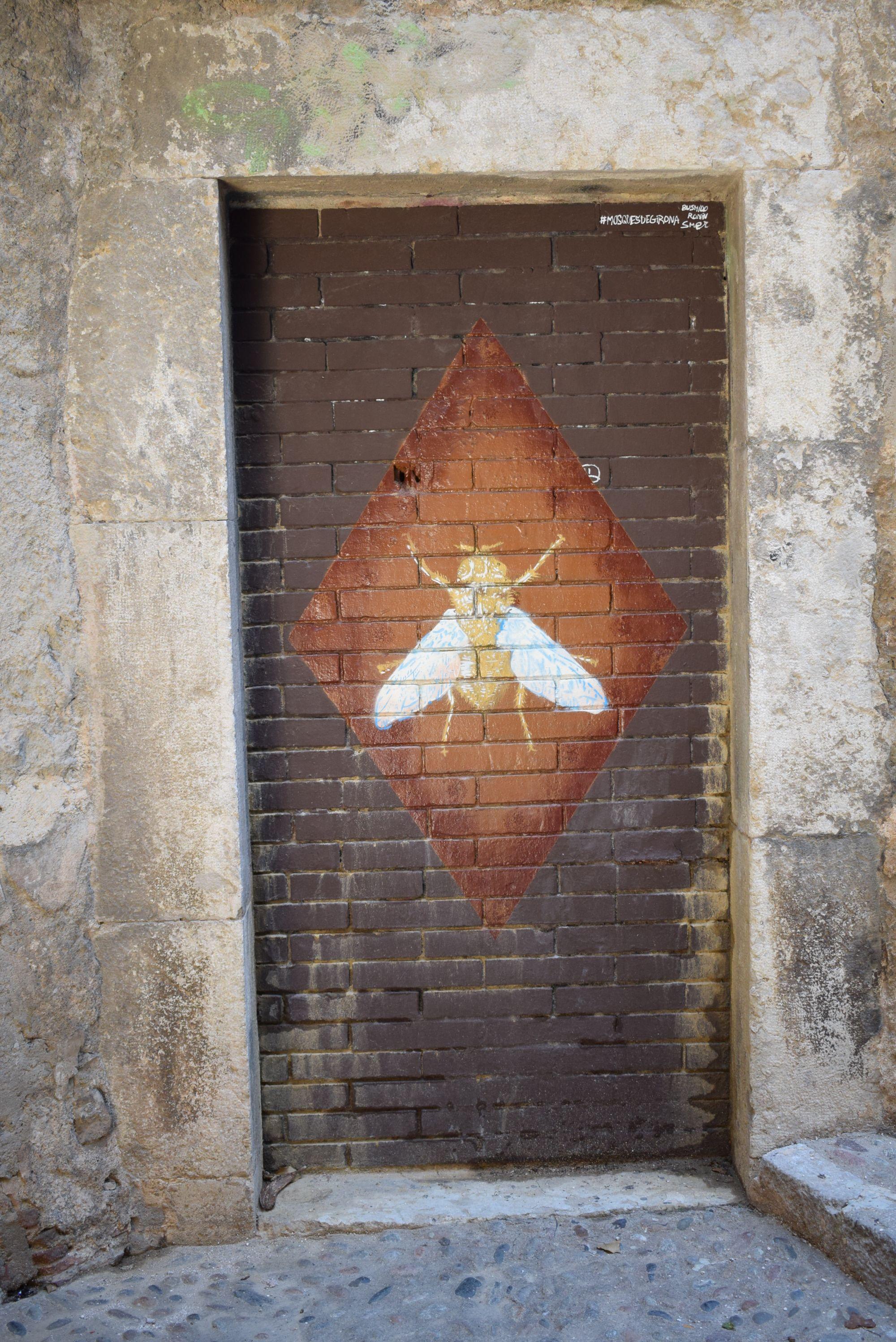 Girona flies