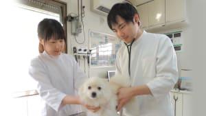 もえぎの動物病院