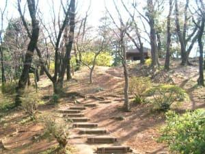 梶ヶ谷第2公園