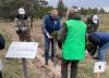 В Рязанской области сажают лес