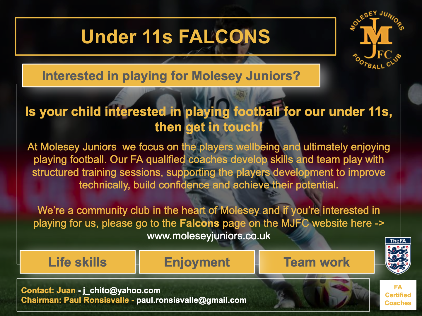 Under 11s Falcons