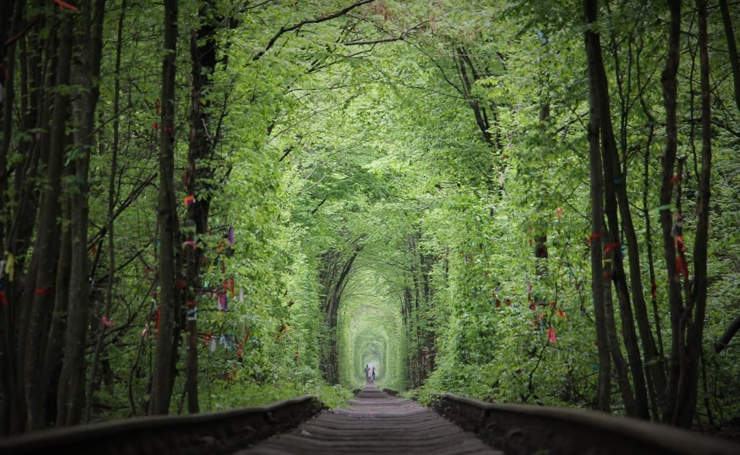 Tunnel of love unreal places in the world