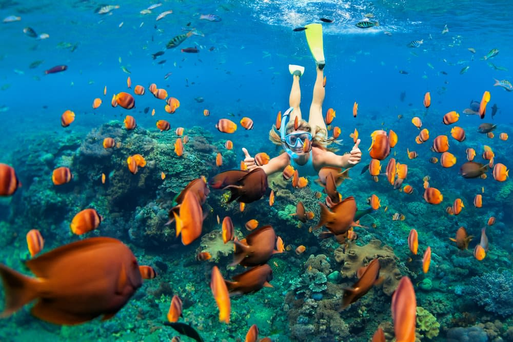 Why a bucket list is so important and how to plan one: Woman deep sea diving in coral reel
