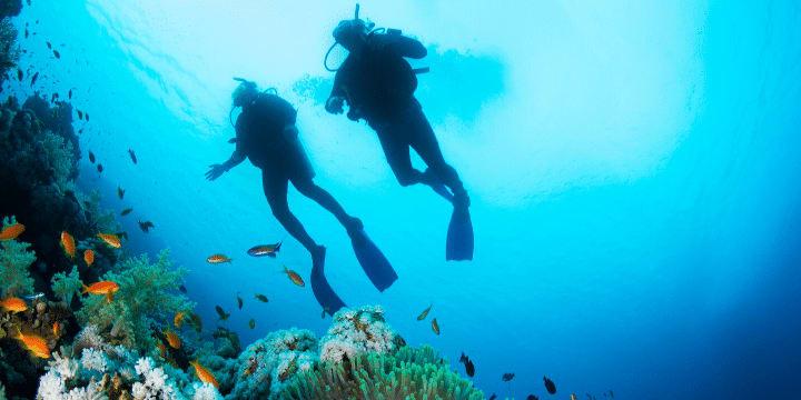 Palau-Bans-Reef-Toxic-Sunscreens-diving-AllClear-Travel