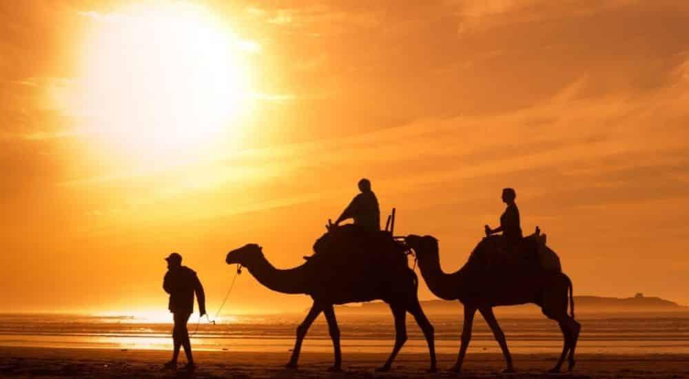 The-Best-Desert-Holiday-Destinations-on-Earth- Camel Trek | AllClear Travel Blog