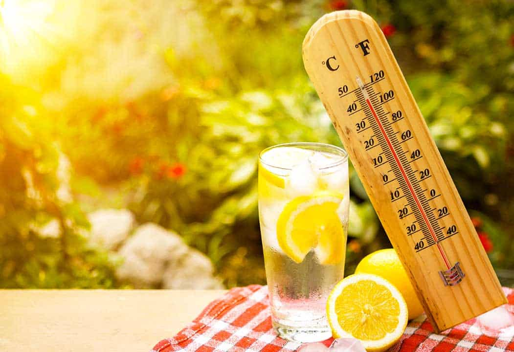Your Guide for Coping with the Hot Weather