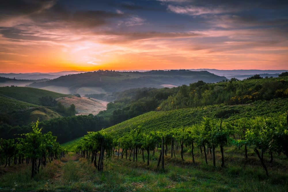 Top 5 wine tours in Europe: Sunrise among the vineyards of the beautiful Val d'Elsa in Tuscany