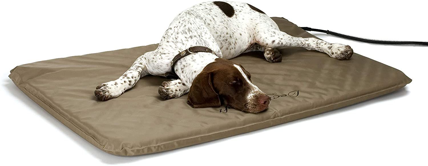gifts for dog lovers-1.jpg