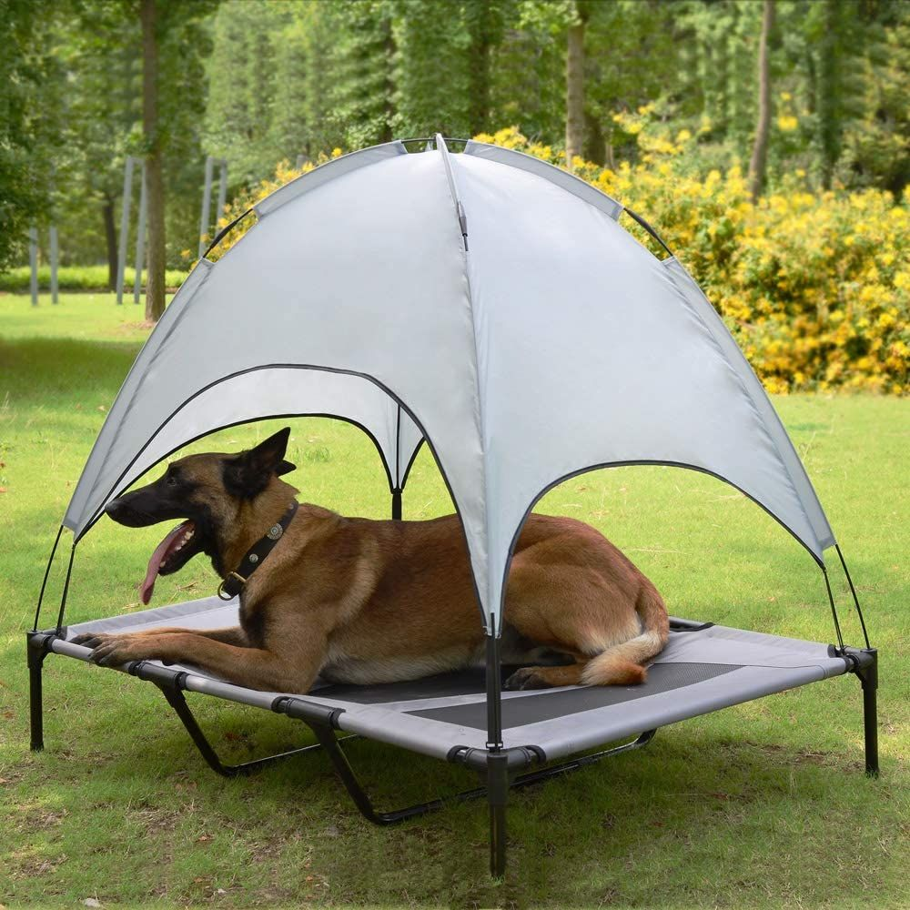 gifts for dog lovers-2.jpg