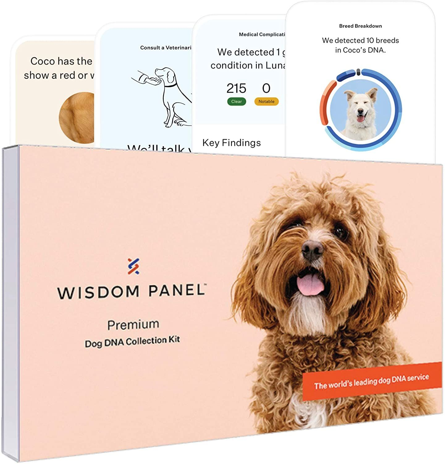gifts for dog lovers-5.jpg