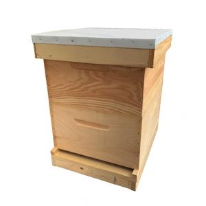 Double Deep Hive