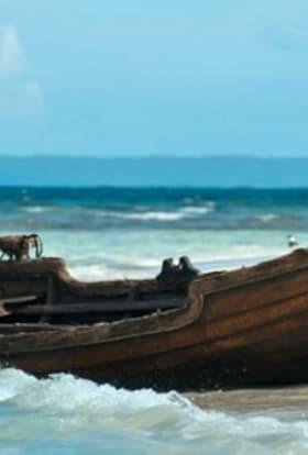 Martin Freeman drama filming in Puerto Rico