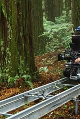 Pete's Dragon filmed NZ as US Pacific Northwest