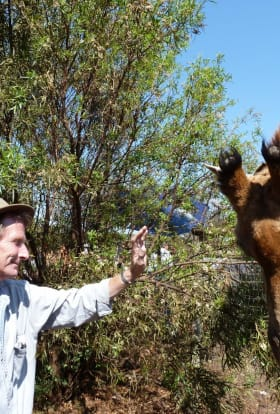 Filming in South Africa - An Insider's View