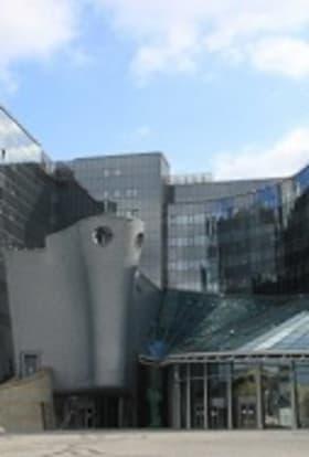 Polish Film Institute calls for filming incentives