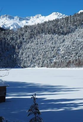 Fox Searchlight filmed Downhill in the height of Austria's ski season