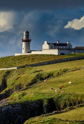 Screen Ireland provides €4.5m coronavirus support measures