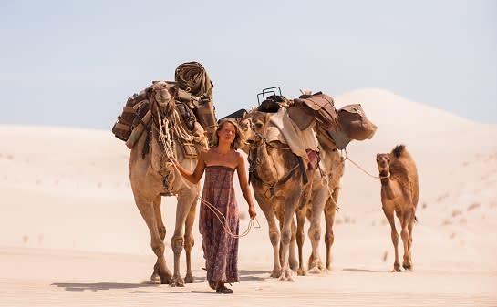 Tracks Camels 2