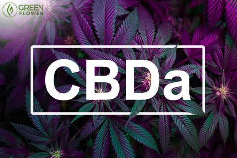 Τι είναι το CBDa και τι κάνει 4