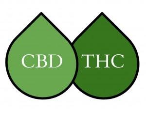 Κανναβιδιόλη (CBD) εναντίον Τετραϋδροκανναβινόλης (THC) : Διαφορές 1