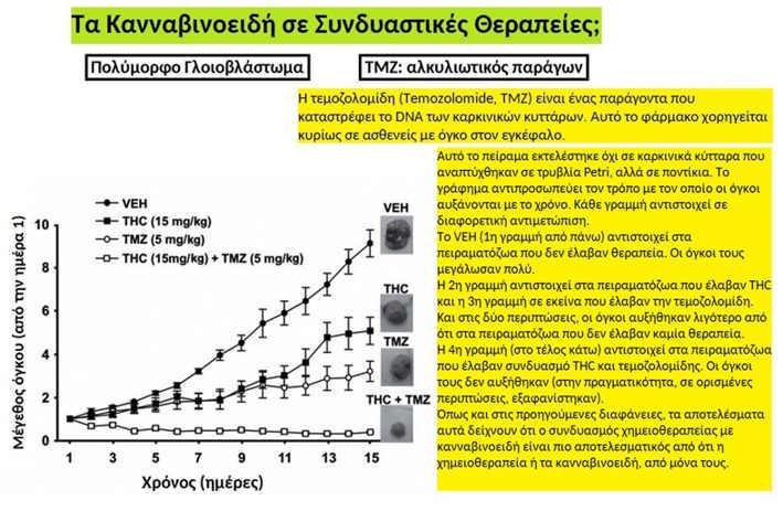 Κλινικά Αποτελέσματα : Ραδιοχημειοθεραπεία μαζί με Κανναβιδιόλη (CBD) 5