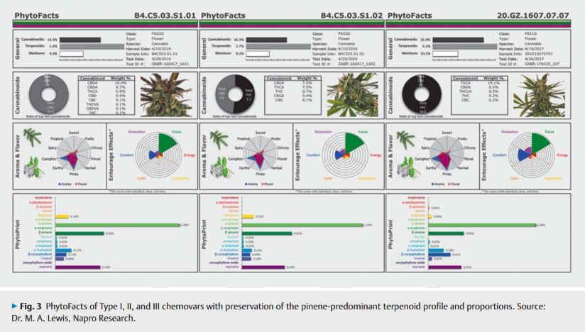 Ιατρικά Σεμινάρια @ Balkannabis Expo 4