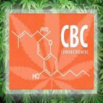 Κανναβιχρωμίνη (CBC) - 5 οφέλη για την υγεία 1