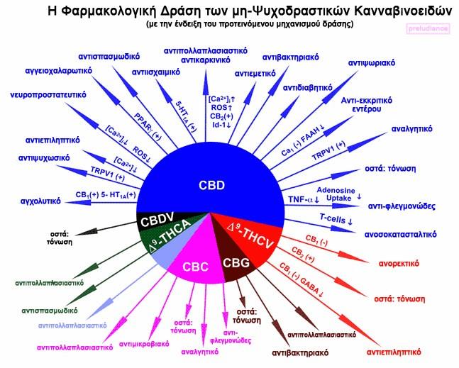 Η Φαρμακολογική Δράση των μη-Ψυχοδραστικών Κανναβινοειδών 9