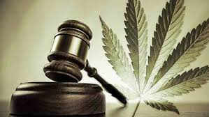 νόμος 4801/2021 φαρμακευτικη κανναβη