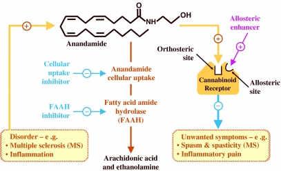 Φαρμακολογία των κανναβινοειδών: τα πρώτα 66 χρόνια 4