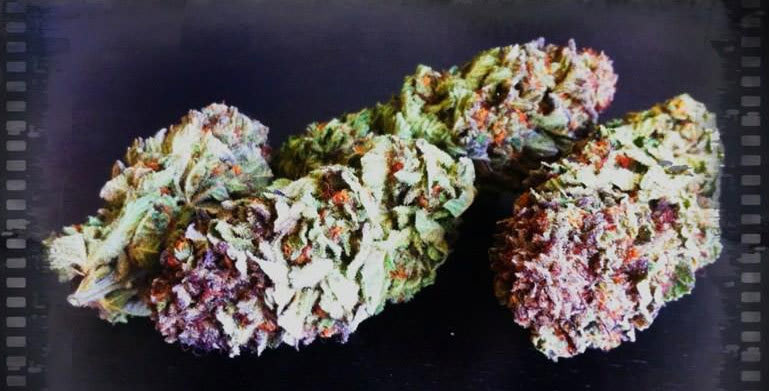 what-is-cbd-in-weed
