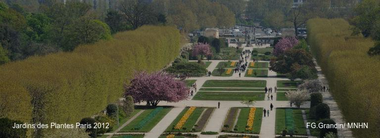 Jardins des Plantes Paris 2012 FG.Grandin/ MNHN