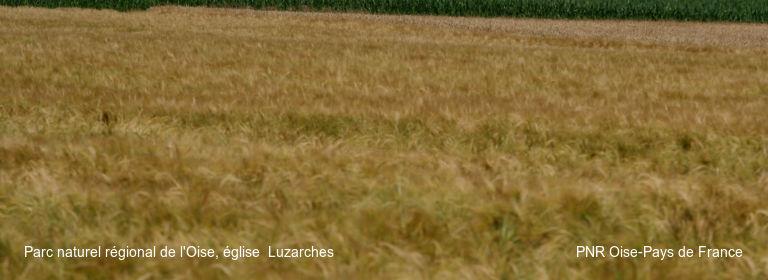 Parc naturel régional de l'Oise, église  Luzarches PNR Oise-Pays de France