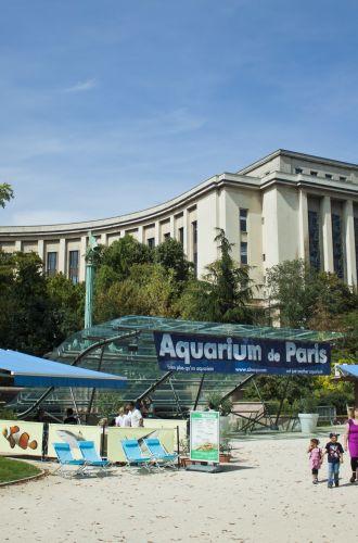 Aquarium de Paris Cinéaqua%252C Paris 2012 Aquarium de Paris Cinéaqua