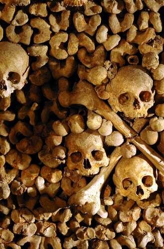 Catacombes%252C ossements et crânes%252C Paris 2005 Paris Musées%252FChristophe Fouin