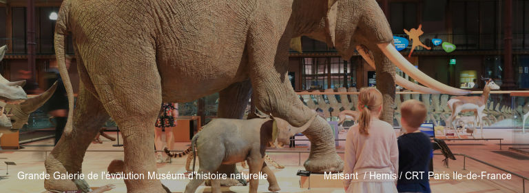 Grande Galerie de l'évolution Muséum d'histoire naturelle Maisant  / Hemis / CRT Paris Ile-de-France