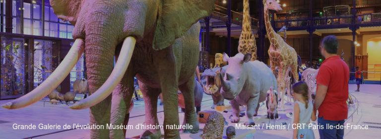 Grande Galerie de l'évolution Muséum d'histoire naturelle Maisant %252F Hemis %252F CRT Paris Ile-de-France