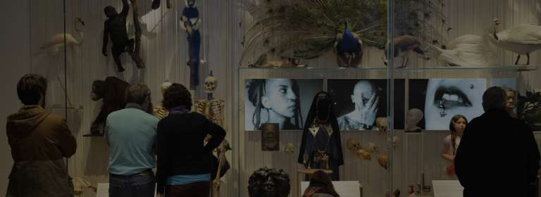 Man Gallery, showcases the human body MNHN/Domenech