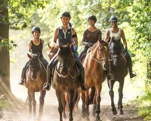Horse Holidays, centre de randonnées équestres, Maisons-Laffitte. R. Emereau/Horse Holidays