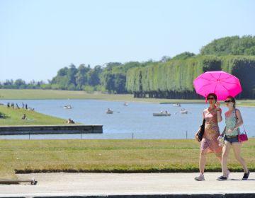 Domaine de Versailles, les Jardins et le Grand Canal, visiteurs avec parapluie rose Jarry-Tripelon / CRT Paris Ile-de-France