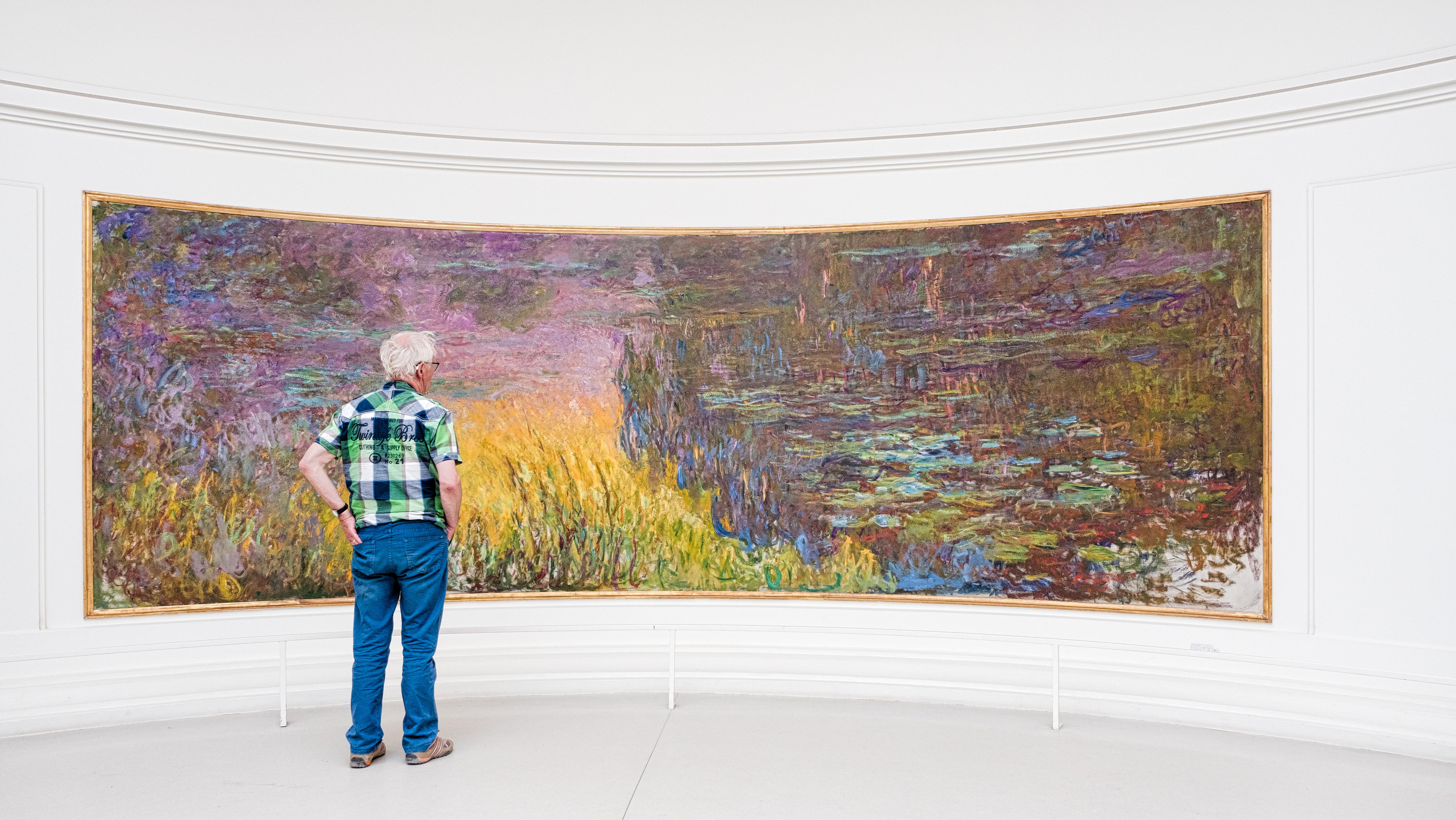 Touriste regardant les Nymphéas au musée de l'Orangerie%252C Paris 2017. Van Biesen - Ooshot - CRT Paris Ile-de-France