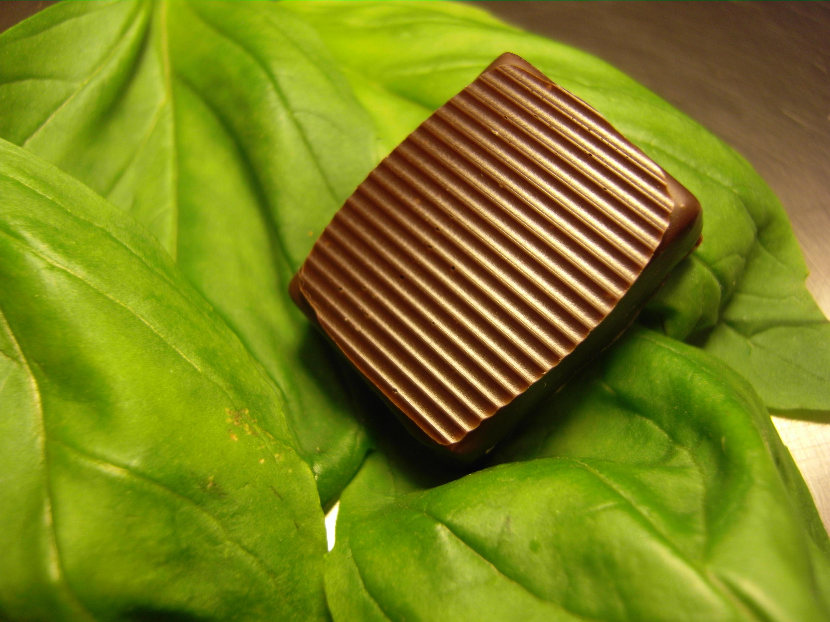 Chocolat avec ganache basilic%252C Gilles Cresno chocolatier%252C Rueil-Malmaison%252C 2010. Gilles Cresno chocolatier%252C 2010
