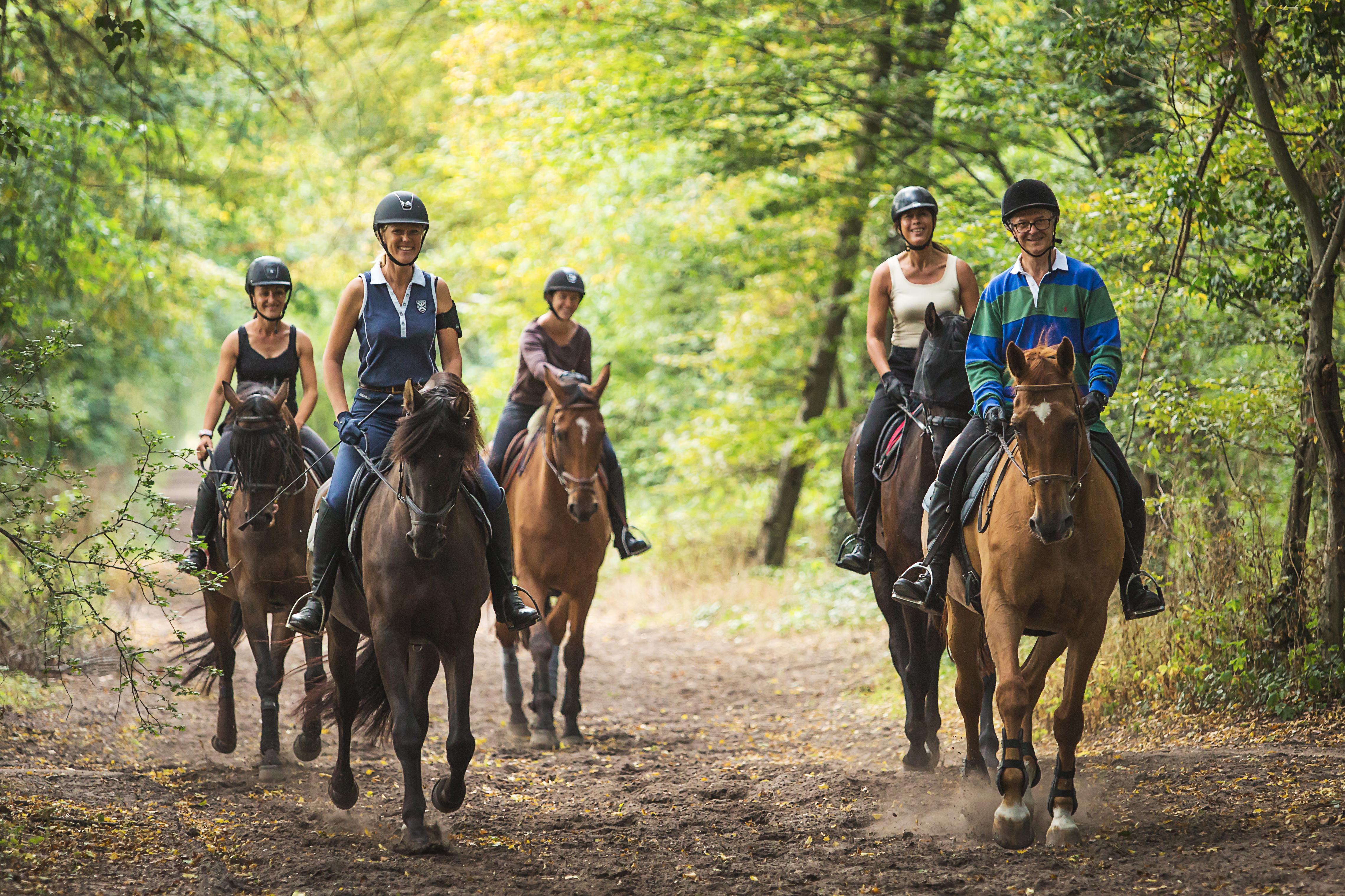 Horse Holidays%252C centre de randonnées équestres%252C Maisons-Laffitte. R. Emereau%252FHorse Holidays