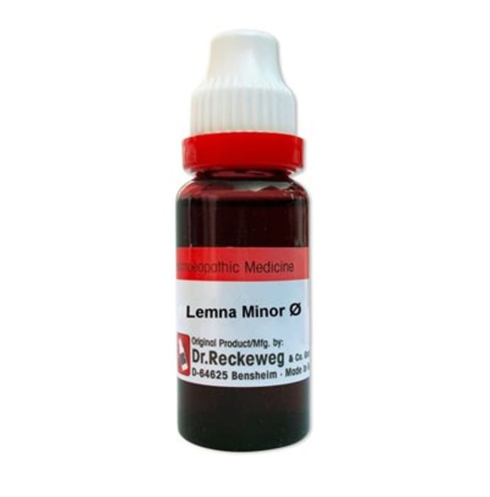 Dr. reckeweg lemna minor mother tincture q: buy dr ...